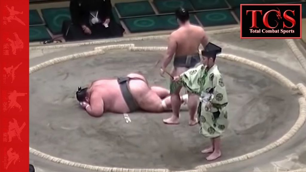 Sumo Wrestling KNOCKOUTS